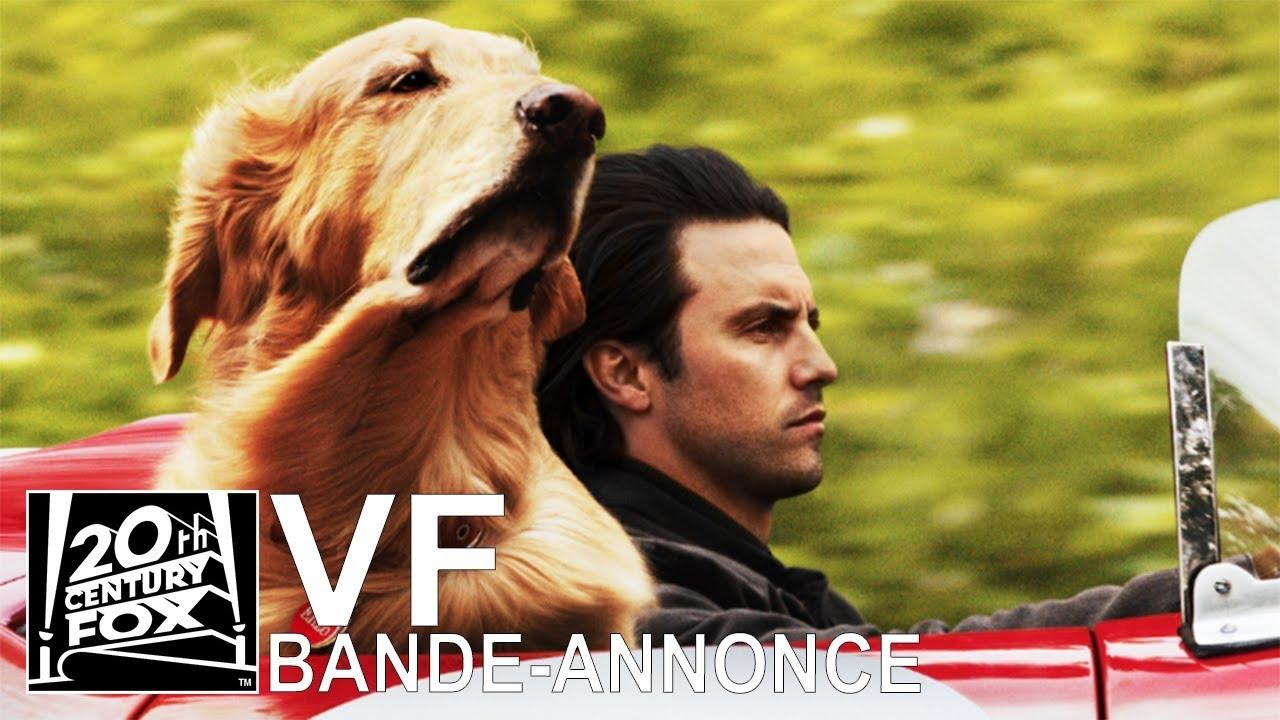 Download L'Art de Courir Sous la Pluie VF | Bande-Annonce [HD] | 20th Century FOX