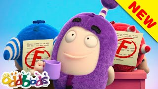 ODDBODS | Study Buddies | Cartoons For Kids