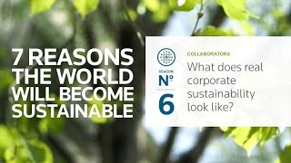 What does real corporate sustainability look like?