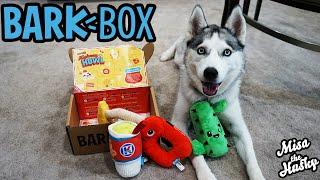August 2021 BarkBox Unboxing