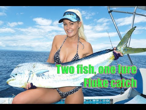 Epic Dolphin fish hook up – two fish, one lure – Fluke catch