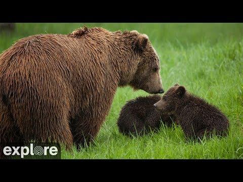 Lower River - Katmai National Park, Alaska powered by EXPLORE.org