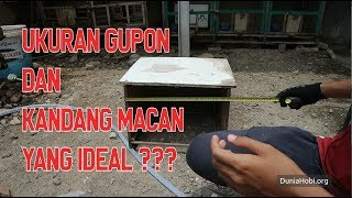 Video Ukuran Kandang Gupon + Kandang Ram yang Ideal untuk Merpati download MP3, 3GP, MP4, WEBM, AVI, FLV Oktober 2018