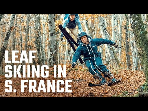 Trending HQ - Autumn Downhill Leaf Skiing