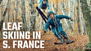 BeAlive - Leaf Skiing in Southern France