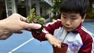 Publication Date: 2018-05-04 | Video Title: 福榮街官立小學17-18年度 – CYC關懷服務四十載 公益