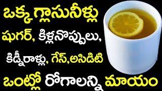 ఒంట్లో ఎలాంటి వ్యాదినైన చిటికలో మాయం చేస్తే మిశ్రమం || Drink One Glass Water Any Health Disease