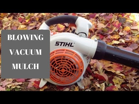 Stihl SH 86 C-E Leaf Blower Review