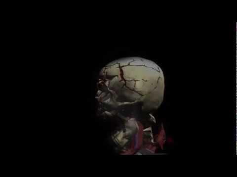 Mortal Kombat X-Ray en la vida real (prueba)