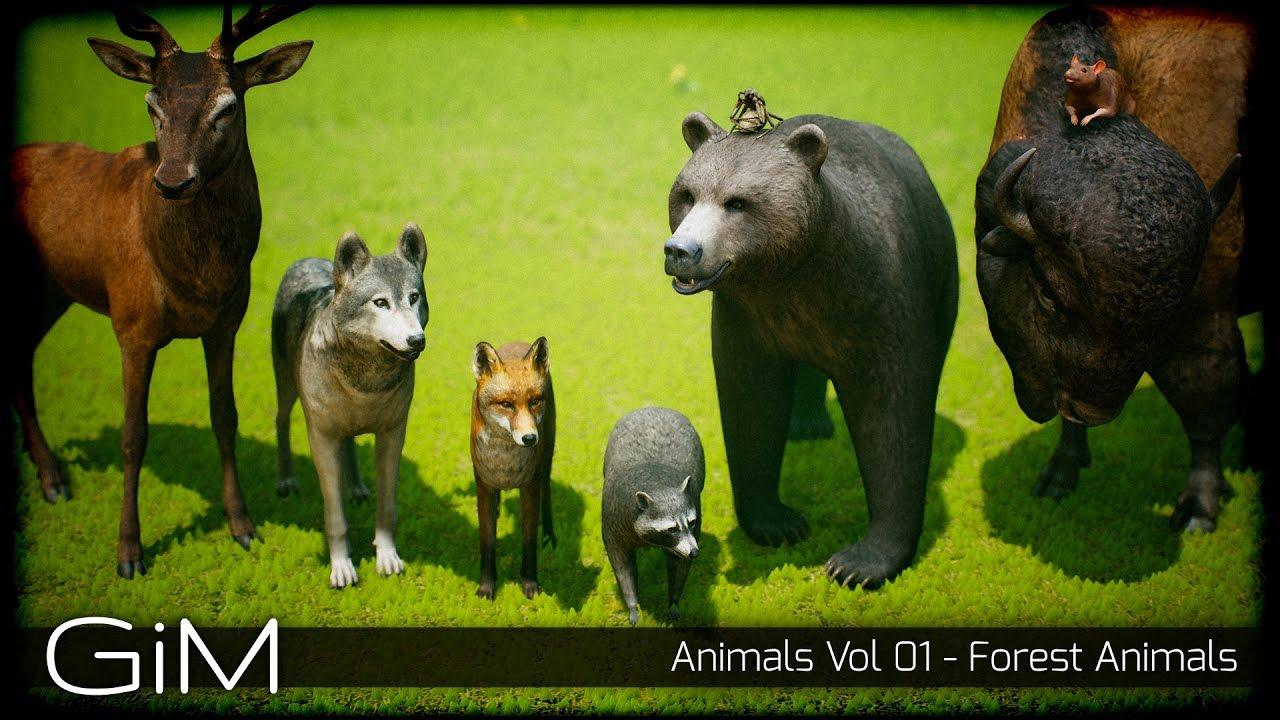 Animals Vol 01 - Forest Animals