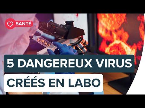 Des virus artificiels créés en laboratoire | Futura