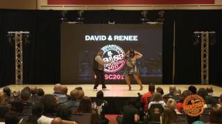 cisc 2017 saturday afternoon david renee