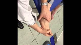 palpation tendons et ligaments du pied  par Alain Lavigne
