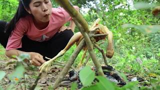 Primitive technology - Recipe with Chicken eating delicious - Grilled / Roast Chicken