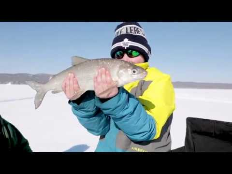 Superior Angling Season 2 Episode 8 - Lake Superior Whitefis