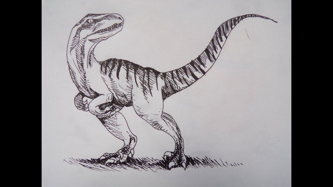 Image Result For Coloriage De Dinosaure