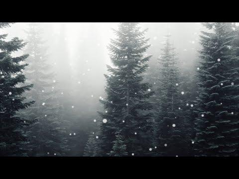 Eyes Half Closed - Crywolf [Lyrics]