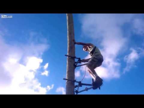 Phát minh độc đáo - Máy trèo cây dừa