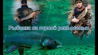 Ловля хариуса на удочку Рыбалка осенью на горной реке Гур