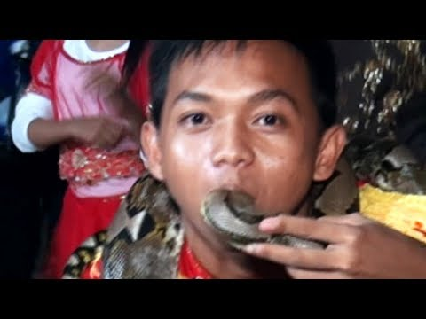 Crazy People Eat Snakes Marching Band Part Rldc  16