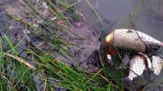 Рыбалка на Днестре. 53 км трассы, Одесса-Измаил(via YouTube Capture., 2013-09-09T04:29:21.000Z)