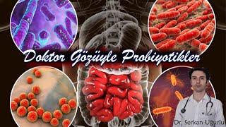 Probiyotik nedir ve nasıl kullanılmalıdır?