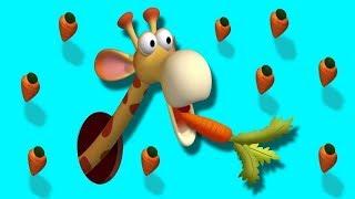 Gazoon - De Afrikaanse wortels