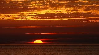 Larry Coryell - Before Dawn       *k~kat jazz café*  Vloppers Bride