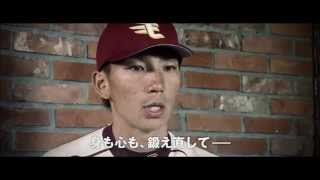 2015プロ野球公式戦、楽天イーグルス本拠地開幕は3月31日(火) 「勝利...