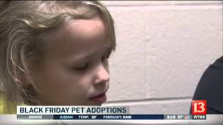 Black Friday pet adoptions at Hamilton County Humane Society