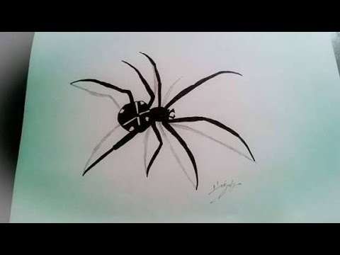 Optical Illusion 3d Spider Drawing On Paper