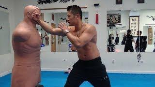 Kung Fu Kicking & Punching Combinations - 10 Panther Kicks & 4 Dragon Punches