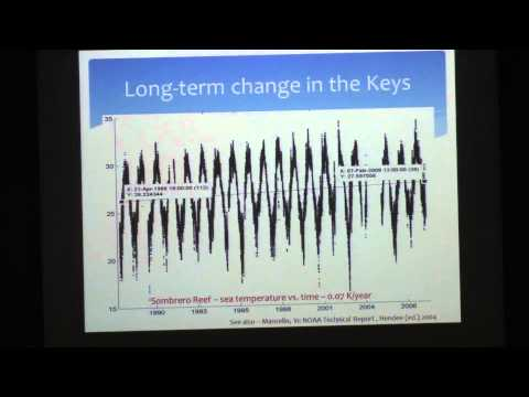 Dr. Lew Gramer, Keys Marine Lab, FIO/USF and NOAA/CIMAS, Part II
