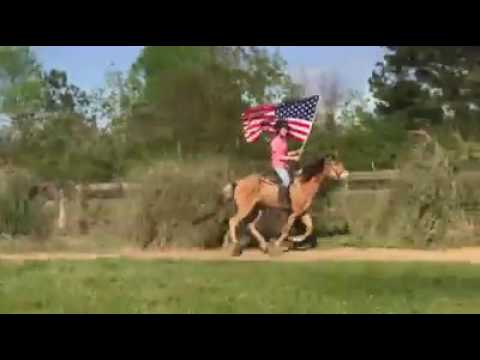 Champagne Spotted Saddle Horse gelding learning to carry the flag
