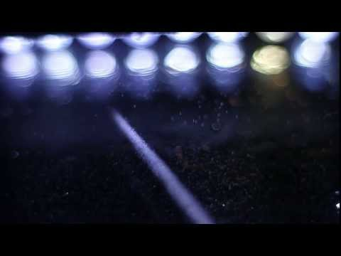 Cosmic Rays in a Cloud Chamber - Teaser