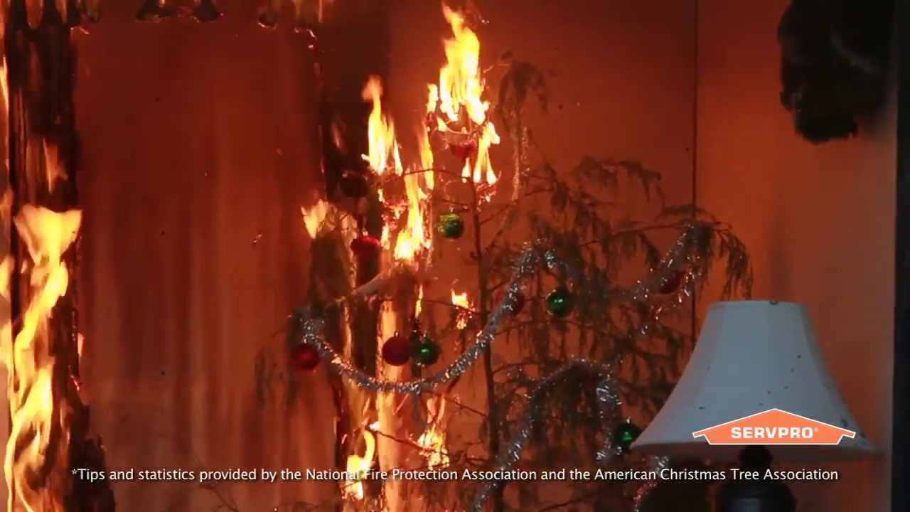 Christmas Tree Fire Safety Youtube