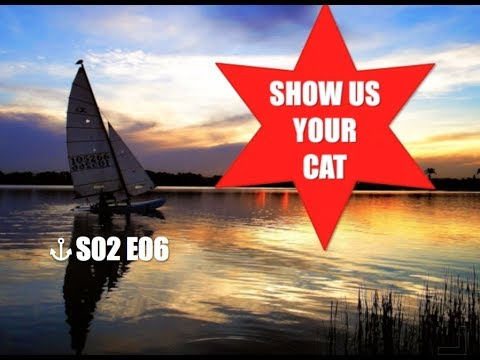 Show us your cat! S02 E06 USA, Italy and Brazil