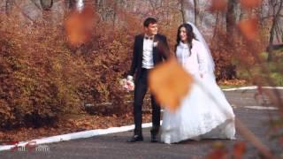 Свадьба - Вячеслав & Александра