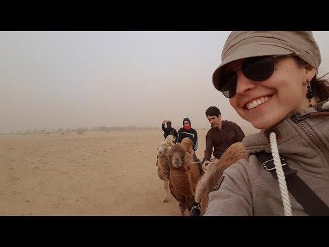 Steffi's Travel Vlog #12 - Semi-Gobi-Desert (Mongolia)