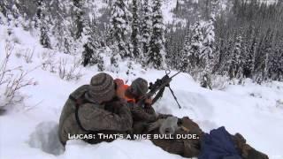 Silent Draw Outdoors - High Mountain Elk & Mule Deer