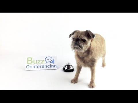 Free Conference Calls Personalised Service & 24/7 Telephone Support – Buzz Conferencing
