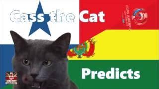 Copa América 2016 - Panama vs Bolivia - Cass the Cat Predicts