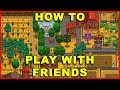 Stardew Valley: How to Play Co-Op Multiplayer With Friends (Steam Beta)
