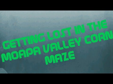 Getting lost in the moapa valley corn maze