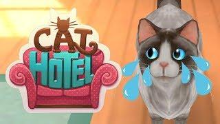Мой Маленький Котик. Мой Виртуальный Питомец Отель для Котят. Симулятор котика для детей.