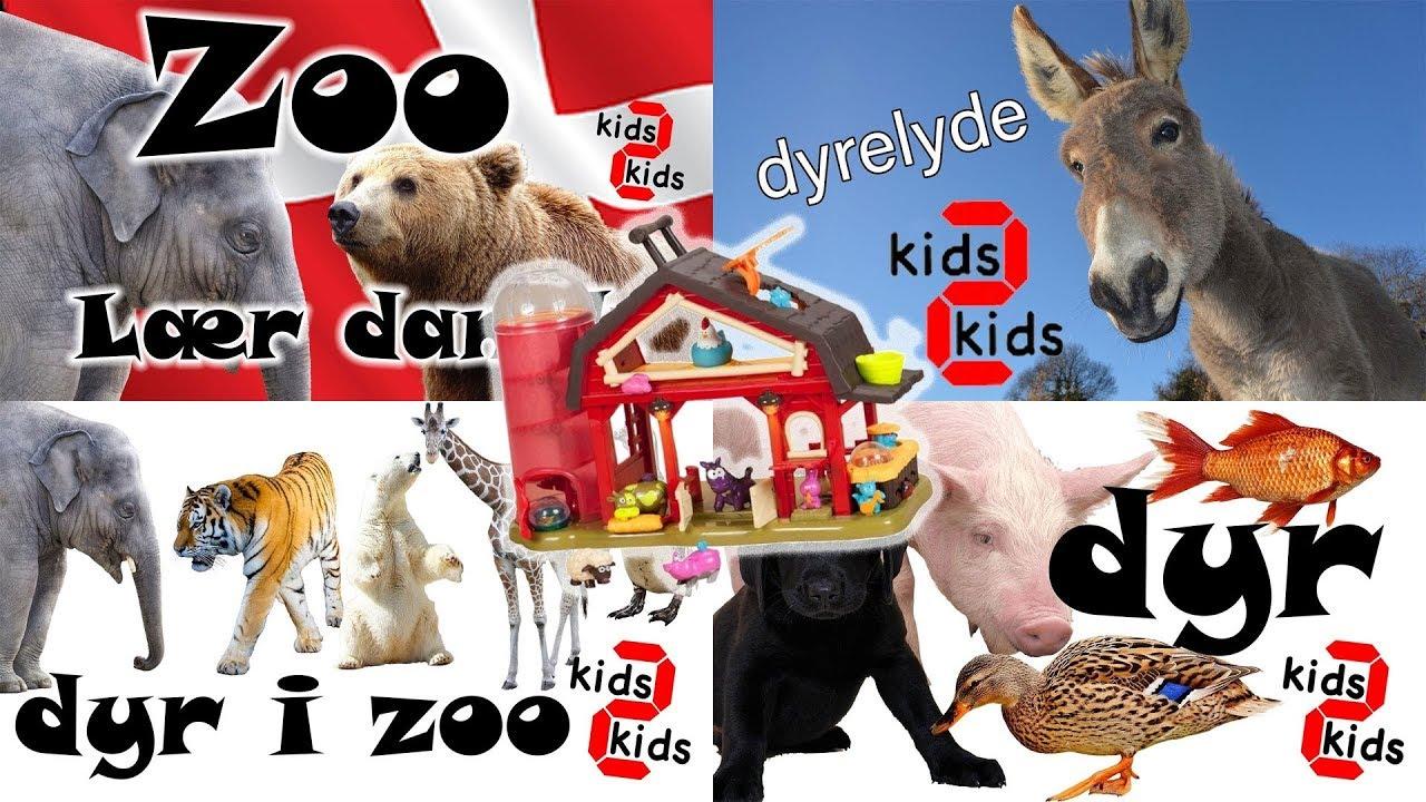Lær dyrenes navne og dyrelyde i zoo og på en bondegård med kids 2 kids