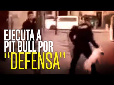 Policía asesina a pitbull en Nogales