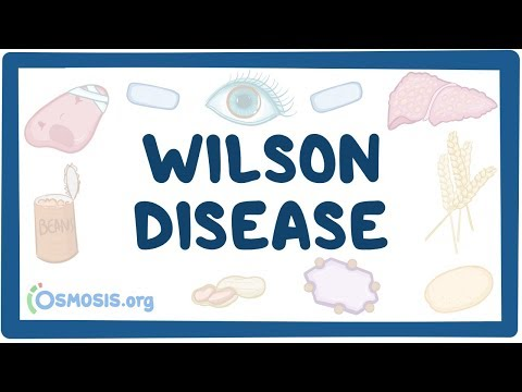 Wilson disease - causes, symptoms, diagnosis, treatment & pathology