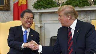 【杨建利:美国一定要解决朝核问题】6/28 #焦点对话 #精彩点评