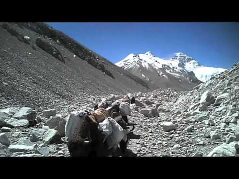 Bill Burke 2012 Mt. Everest Video
